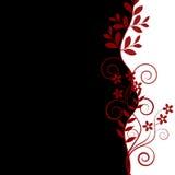 рамка цветков Стоковые Фотографии RF