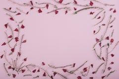 Рамка цветочного узора на розовой предпосылке Стоковые Изображения