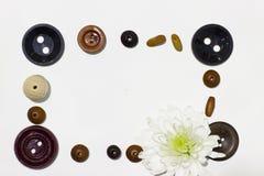 Рамка шариков, кнопок и белой хризантемы стоковые изображения rf