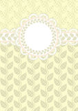 Рамка шнурка на светлой предпосылке Стоковые Фото