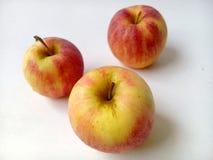 Рамка Яблока Стоковые Изображения