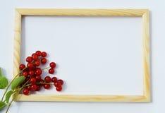 Рамка для текста, фото Стоковое Изображение