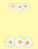 рамка camomiles иллюстрация штока