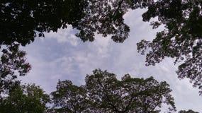 Рамка ` s неба стоковые фотографии rf
