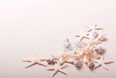 Рамка seashells на песке Стоковые Фото