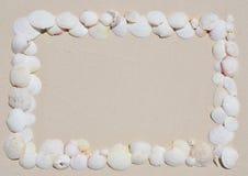 Рамка seashells Стоковая Фотография