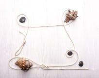 Рамка seashels Стоковые Изображения RF