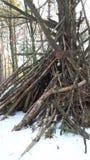 Рамка Teepee Snowy деревянная Стоковое Фото