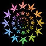 Рамки круга цветастых листьев изолированных на черноте. Стоковая Фотография