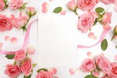 Рамки от роз на белой предпосылке Плоское положение, взгляд сверху Стоковые Фото