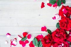 Рамки от роз на серой деревянной предпосылке Плоское положение с космосом экземпляра Текстура картины цветков Стоковые Фотографии RF