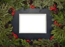 Рамки рождества с вечнозеленой елью, конусами, ягодой a падуба Стоковые Фото