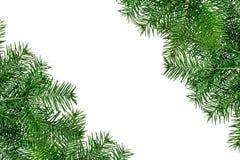 Рамки рождества зеленые изолированные на белой предпосылке Стоковая Фотография RF