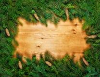Рамки рождества зеленые Стоковые Фотографии RF