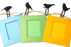 Рамки фото при зажимы изолированные на белые птицы Стоковые Изображения