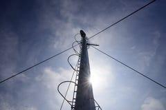 Рангоут парусника против голубого неба Стоковая Фотография