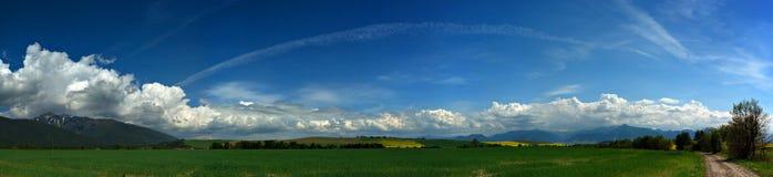 раннее лето Стоковая Фотография RF