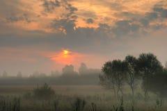 раннее утро Стоковые Фото