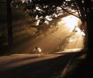 раннее утро Стоковое Изображение
