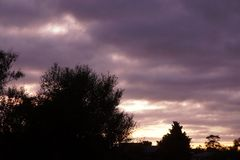 Рано утром восход солнца в Waikato Новой Зеландии стоковая фотография