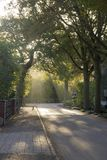 Рано утром в пригородах Стоковые Фотографии RF