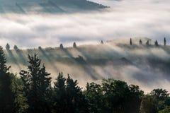 Рано утром в d'Orcia Val стоковая фотография rf