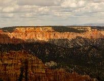 Рано утром каньон Bryce тени стоковые фото