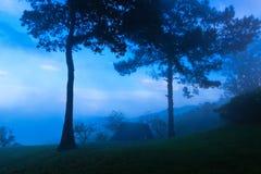 Рано утром на горе человека животиков Mae Стоковое Фото
