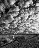 Рано утром на заколдованном парке штата утеса, TX Стоковая Фотография RF