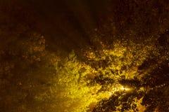 рано утром, свет на утре Стоковая Фотография