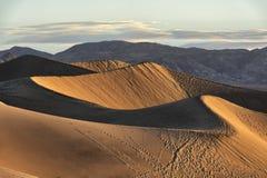 Рано утром солнечный свет на песчанных дюнах Mesquite плоских Стоковая Фотография