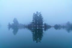 Рано утром туман на пруде бобра Стоковые Фотографии RF