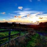 Рано утром paddocks Стоковое Изображение RF