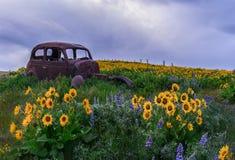 Ранчо горы Dalles, Wa Стоковая Фотография RF