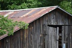 Ранчо лошади в Wood County Техасе Стоковые Изображения RF