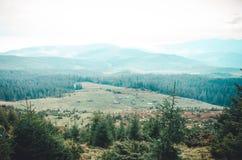 раньше упаденное прикарпатское имело снежок Украину в октябре гор ландшафта стоковая фотография rf