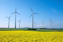 Рапс и windwheels Стоковые Изображения