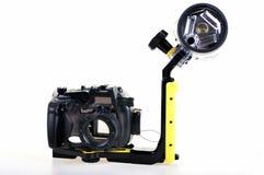 расквартировывать underwater Стоковое Изображение RF