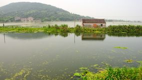Расквартируйте на озере никаком 1 Стоковое Изображение RF