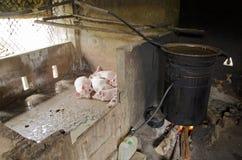 расквартируйте традиционных вьетнамцев Стоковое Изображение