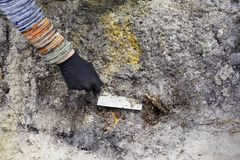 Раскопки археологии чистки в почве Стоковая Фотография