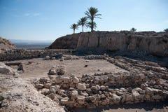 Раскопки археологии Стоковые Изображения RF