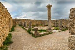 Раскопки в Archeologique de Volubilis, Марокко Стоковая Фотография RF