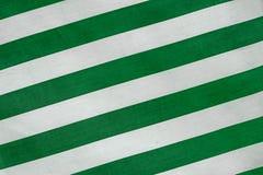 раскосные зеленые нашивки Стоковая Фотография RF