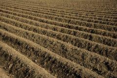 Раскосные furrows поля Стоковые Изображения RF