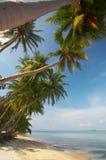 раскосный берег Стоковое Фото