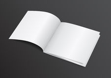 Раскройте белую пустую кассету брошюры для насмешки вверх - Vector Illustra Стоковое Фото