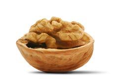 раскройте грецкий орех тени Стоковая Фотография