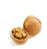 раскройте грецкий орех тени Стоковое фото RF