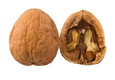раскройте грецкий орех Стоковая Фотография RF
